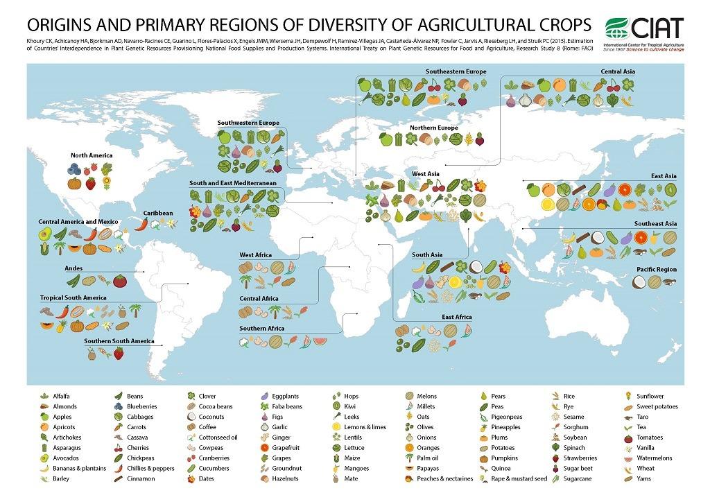 Carte monde origine fruits et légumes