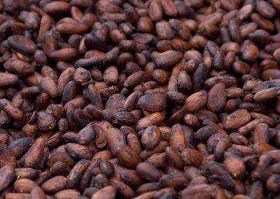 Chaud cacao pour le chocolat !