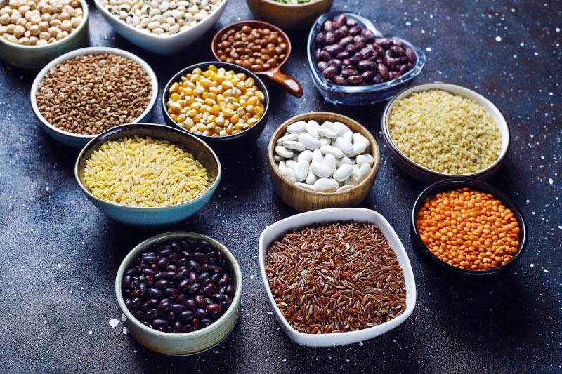 Protéines végétales vue globale article