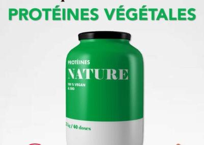 Protéines végétales infographie
