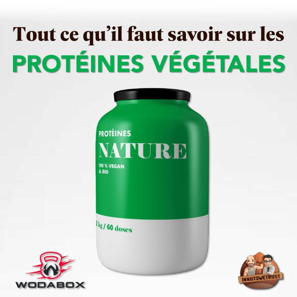 Infographie : protéines végétales